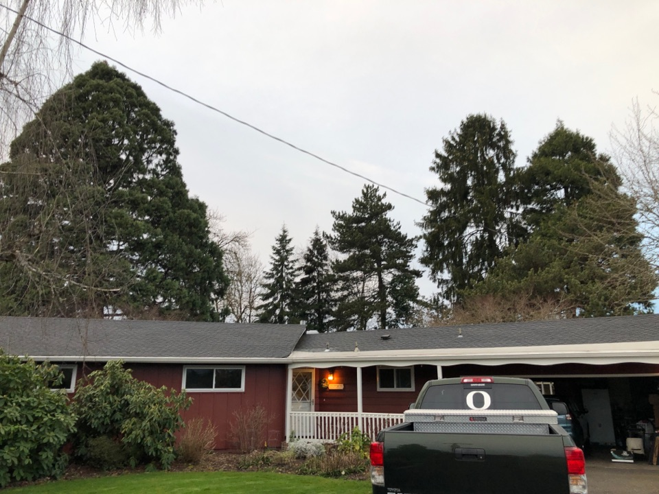 Eugene, OR - Giving a bid on a roof maintenance and cleaning.