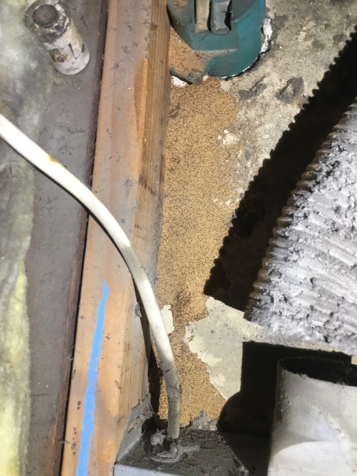 Drywood termite droppings at a apartment complex