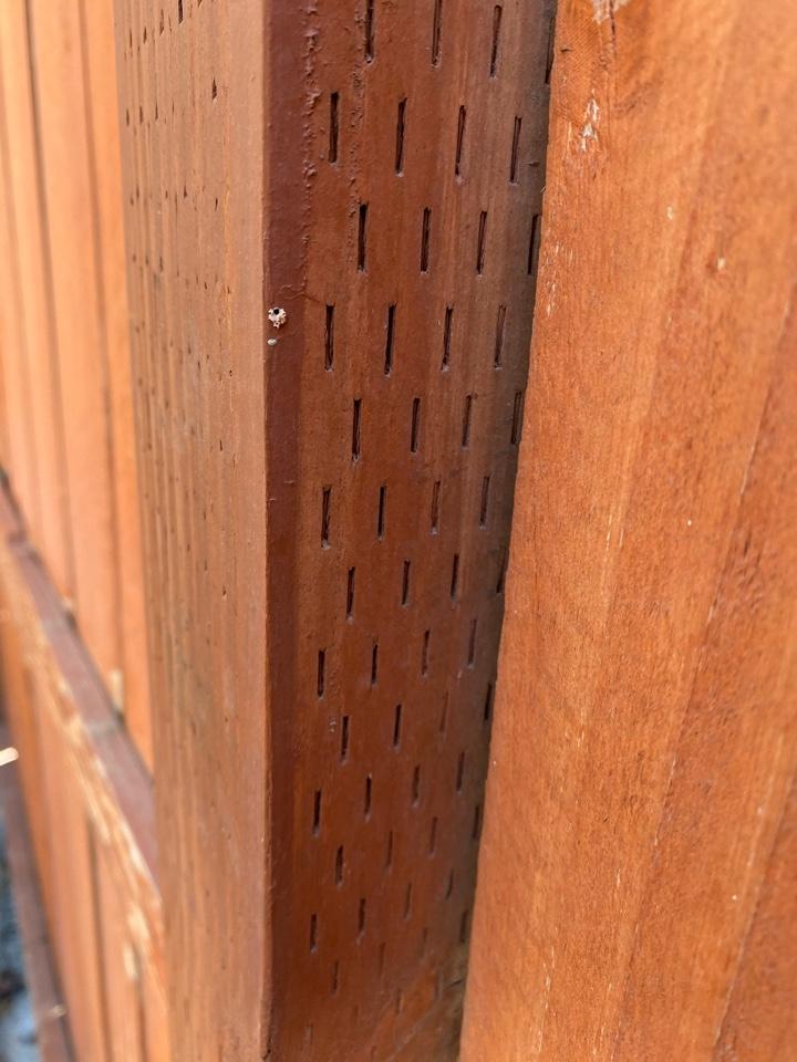 Drywood termites at pressure treated wood post