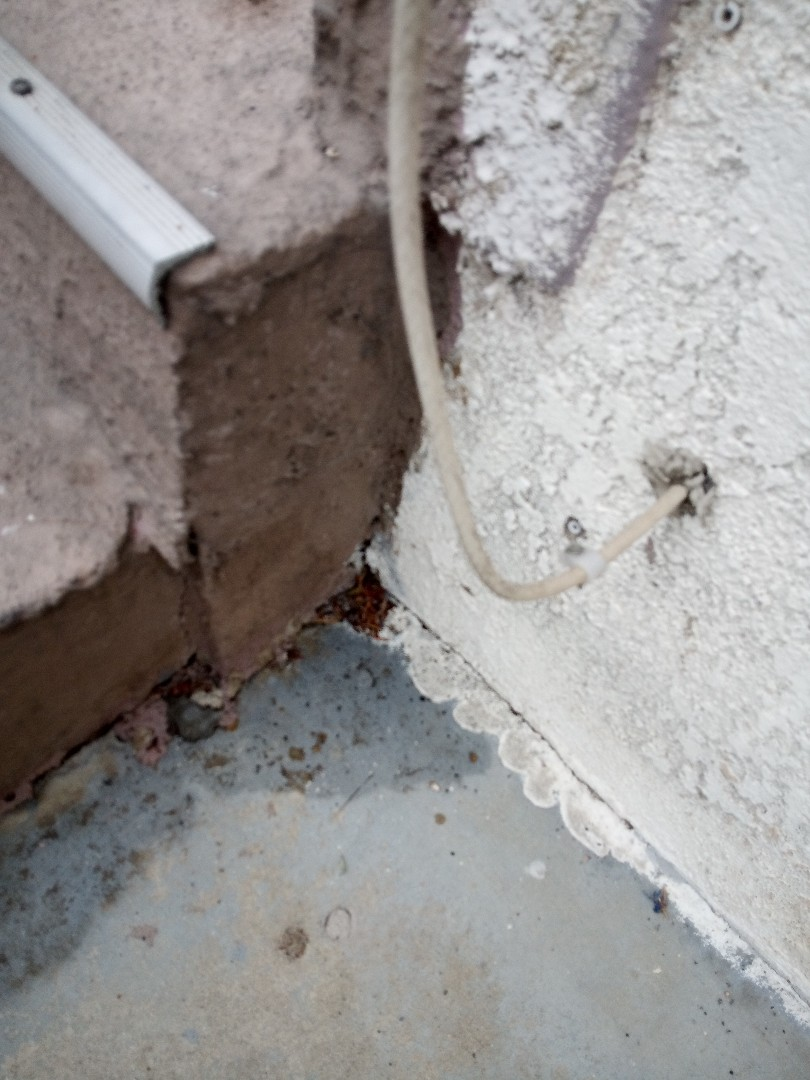 Treating cracks and crevices with Alpine wag for roaches