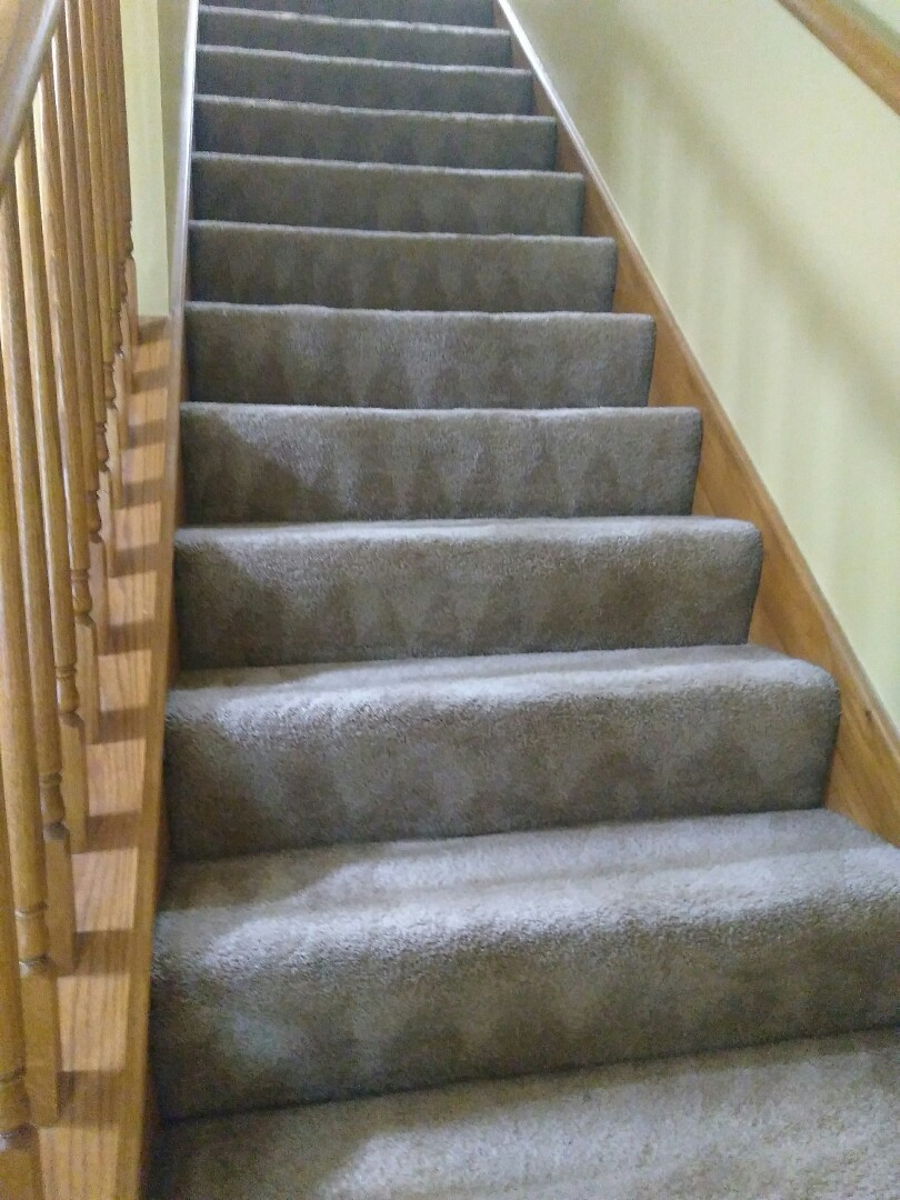 4 rms and stairs organic steam clean