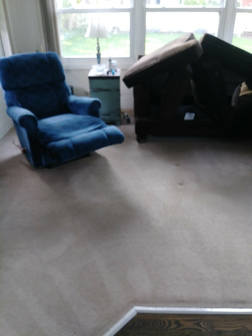 5 RMS, 3 pieces of upholstry and 1 Area rug.