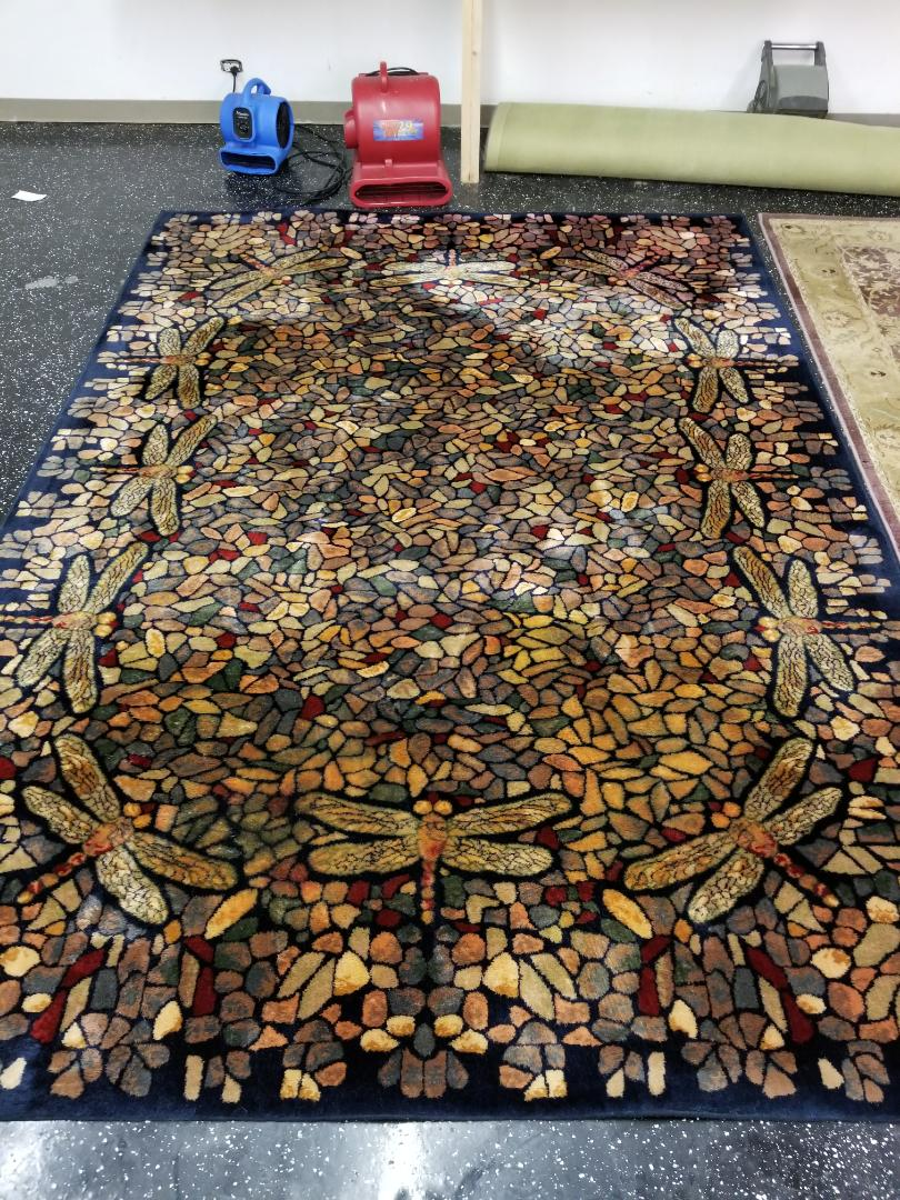 Synthetic area rug with Dragonfly pattern from the Crystal Lake area cleaned and treated by technician Billy.