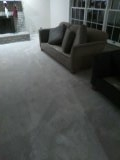 9 RMs, Steps and upholstery deep cleaned, Pretreated, Sanitized and scotch guarded.