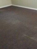 Carpeted areas with mold, cleaned and treated with Organic Sanitizer.