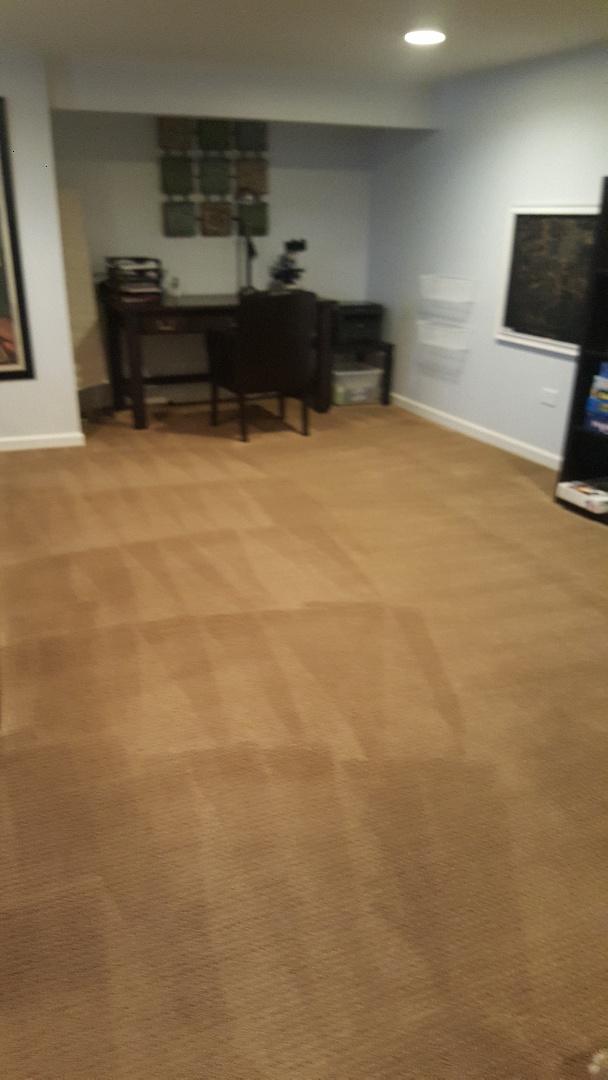 Carpet clening