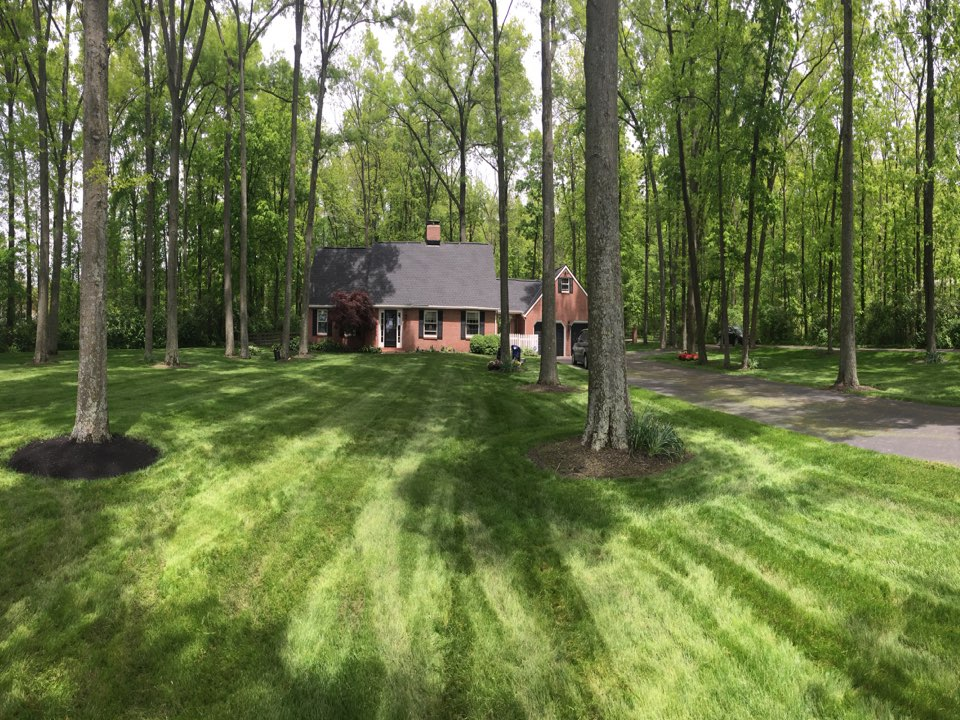 Delaware, OH - New roof by MUTH almost completely done!
