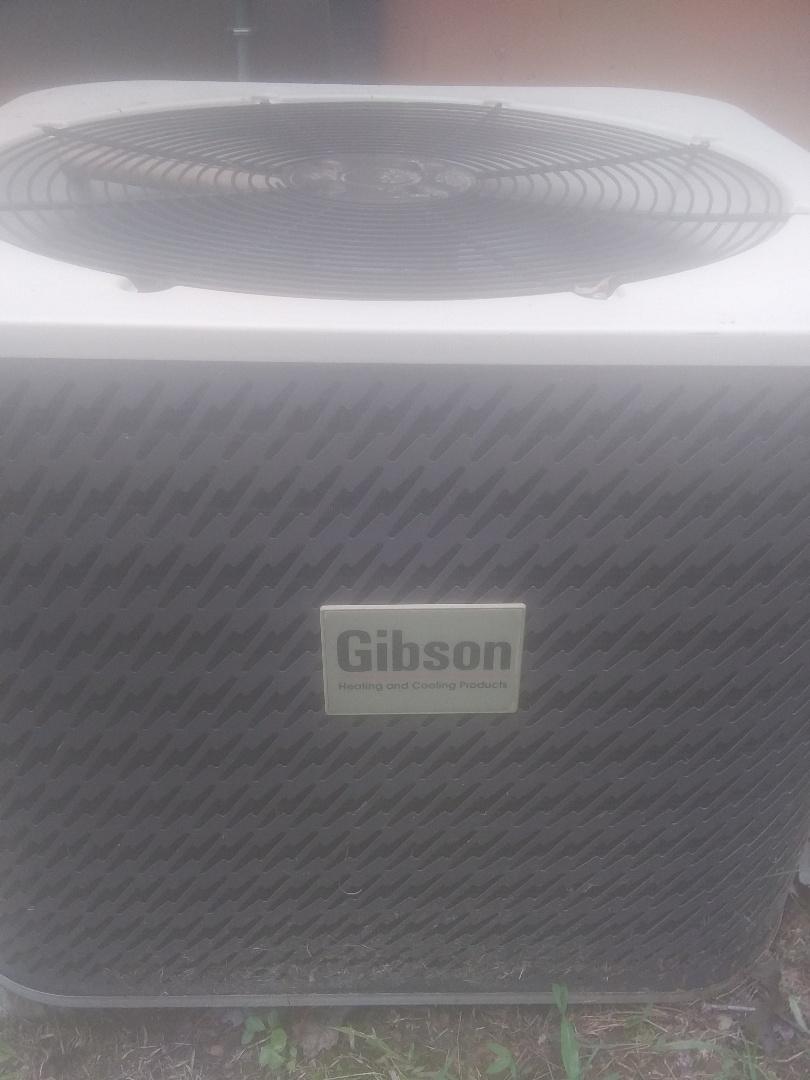 Ellijay, GA - Gibson clean and tune
