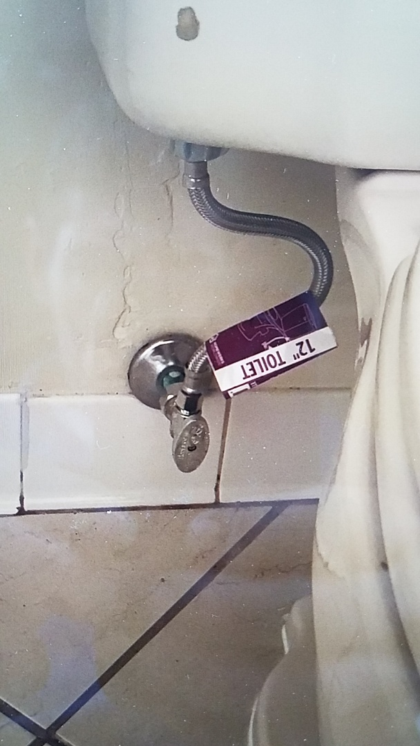 Replaced shutoff valve and supply line on toilet in master bedroom Stafford