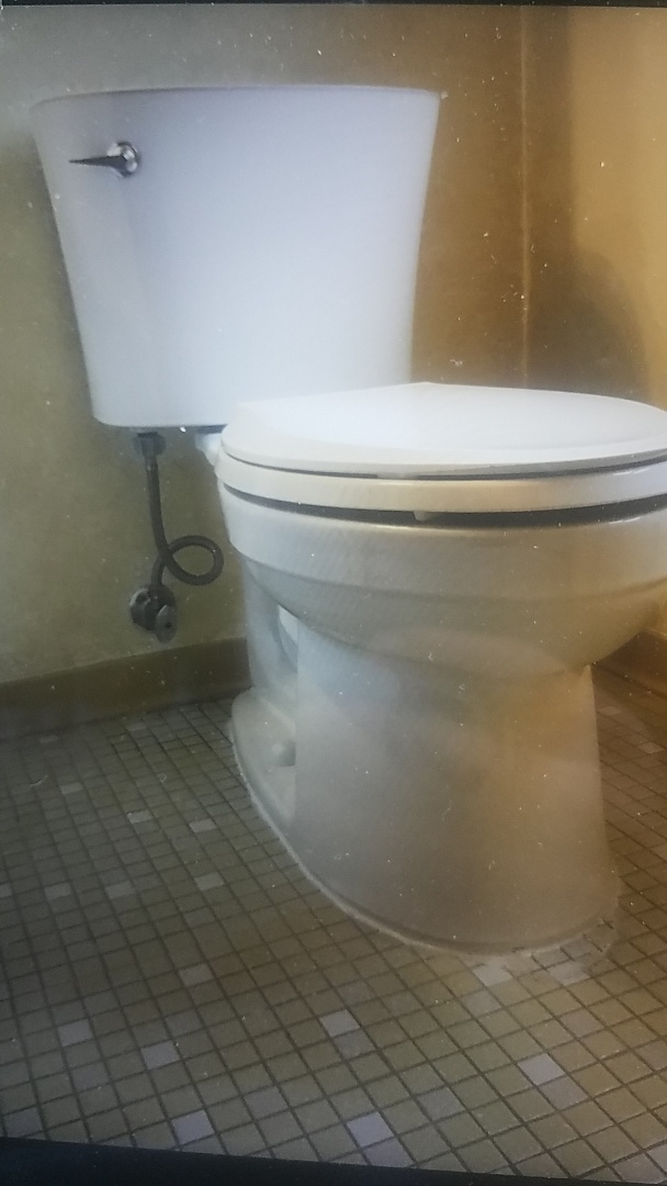 Replaced toilet in Guest bathroom on second floor  New wax ring, supply line and bolts caulked around base