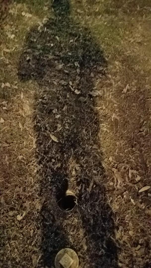 Fredericksburg, VA - Snaked sewer main outside and pulled toilet and snaked From inside Fredericksburg