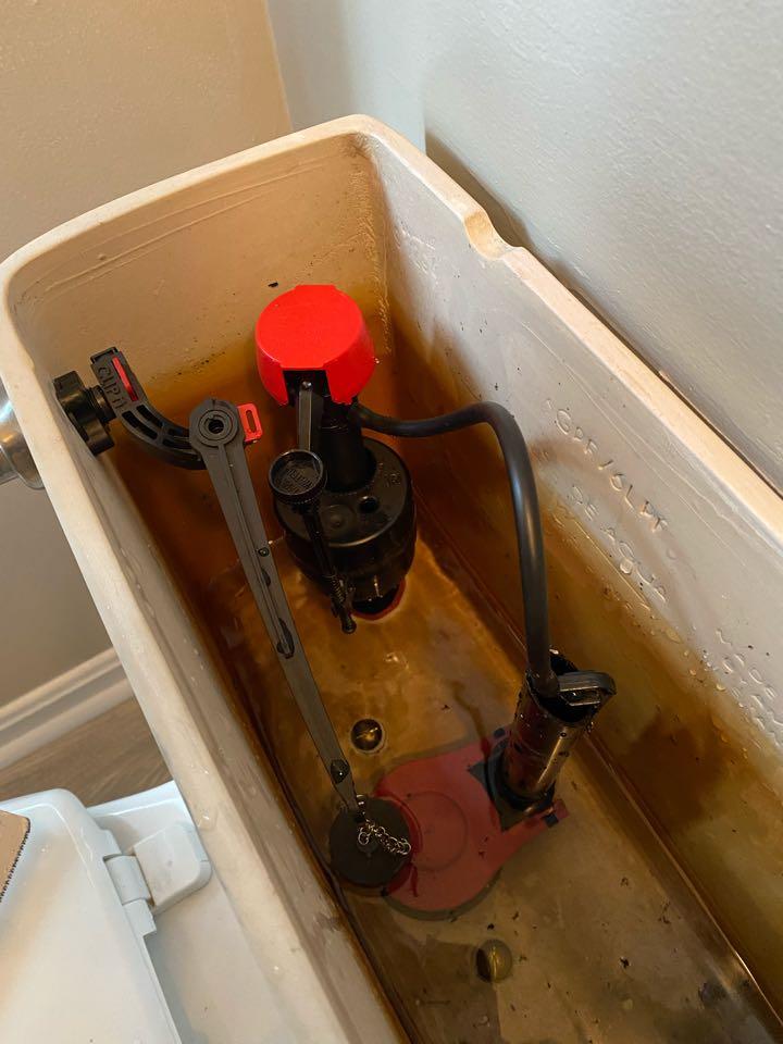 Toilet rebuild in Fredericksburg.