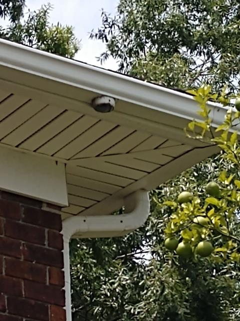 Charleston, SC - missing downspout on residential home in Charleston south Carolina