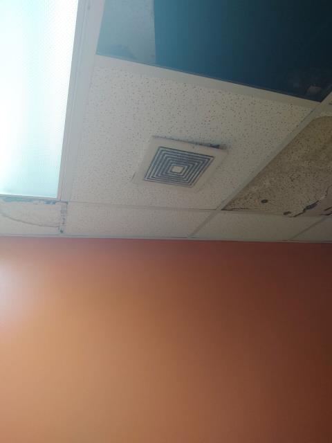 Gaston, SC - repair leaks around vents and toilets leaking
