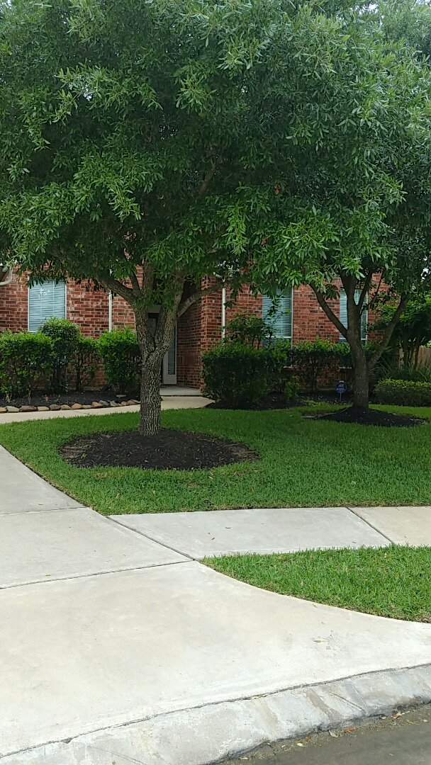 Pearland, TX - Completed 2 system spring check