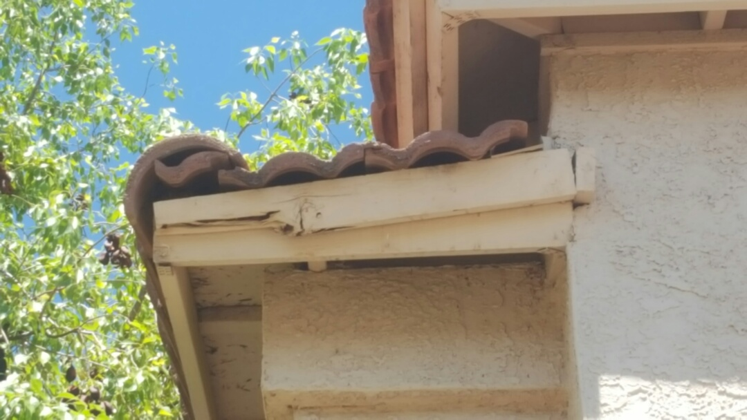 Gilbert, AZ - Side leaking lots debri