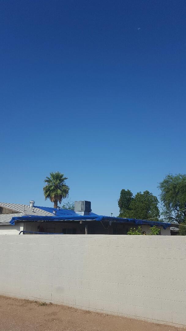 Mesa, AZ - Micri buest