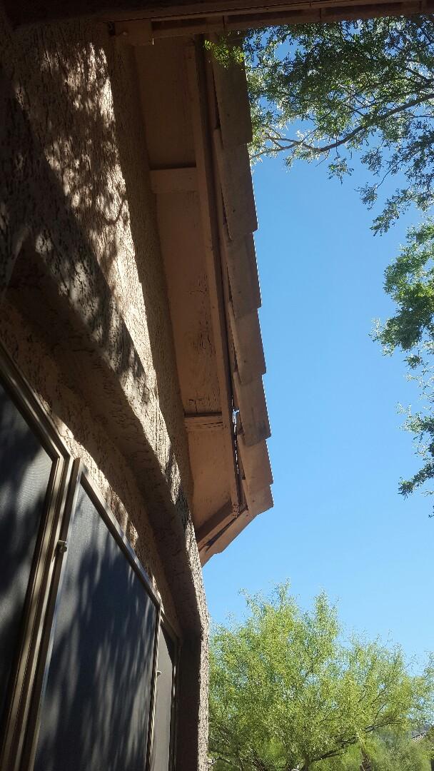 Mesa, AZ - Tile roof felt bad