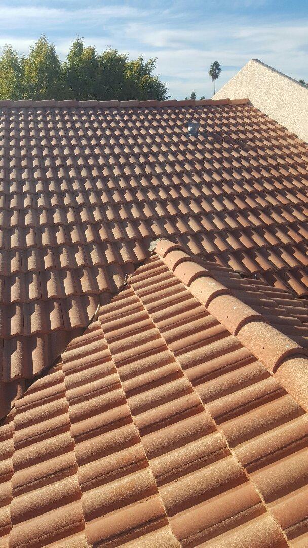 Mesa, AZ - Tile lift and reset