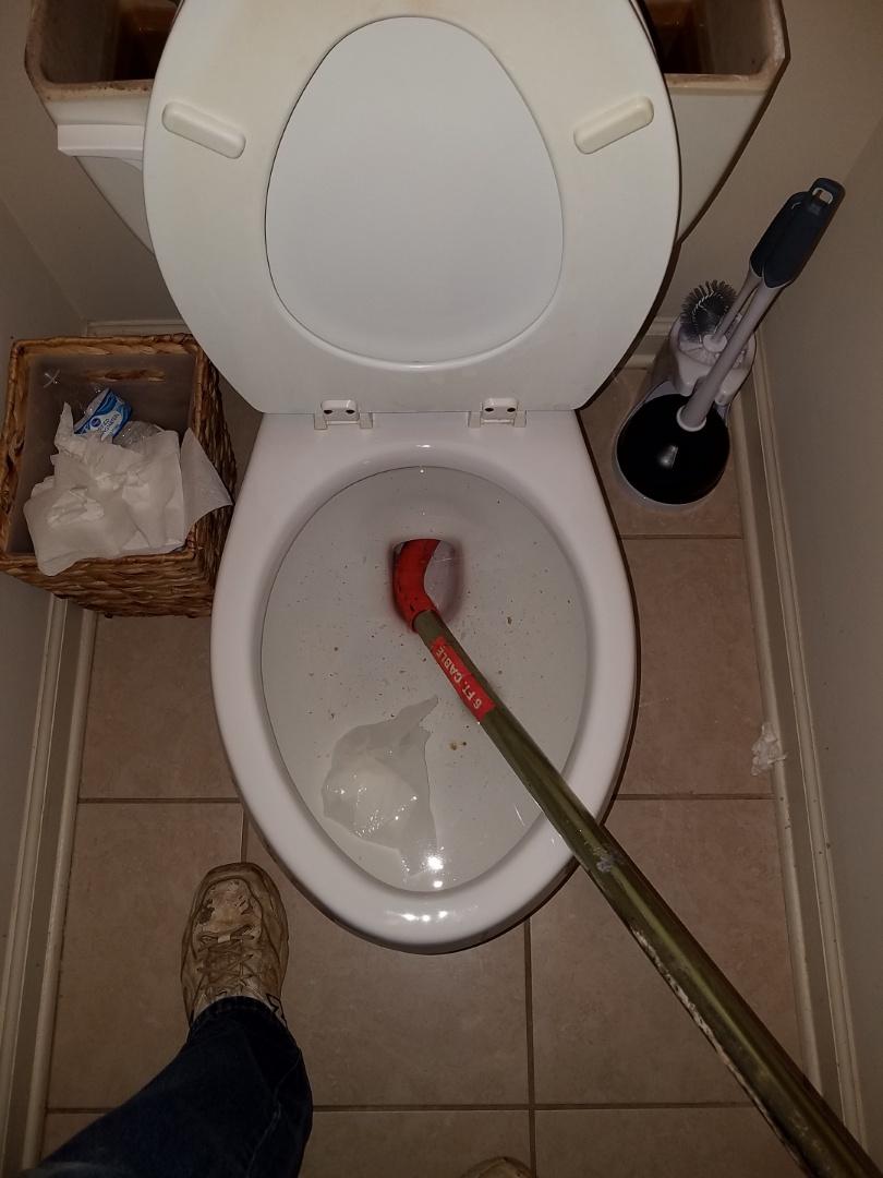 Atlanta, GA - Unstopped master toilet