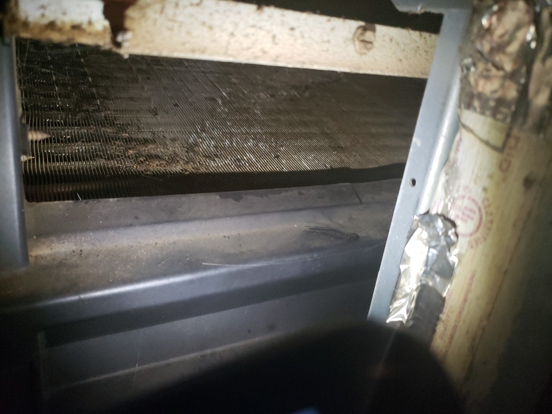 Coil cleaning heat not working on heat pump