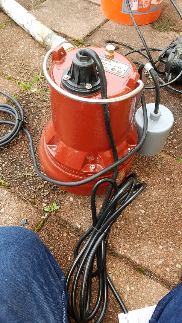 Alpharetta, GA - Changed out a 2-inch sewage ejection pump.