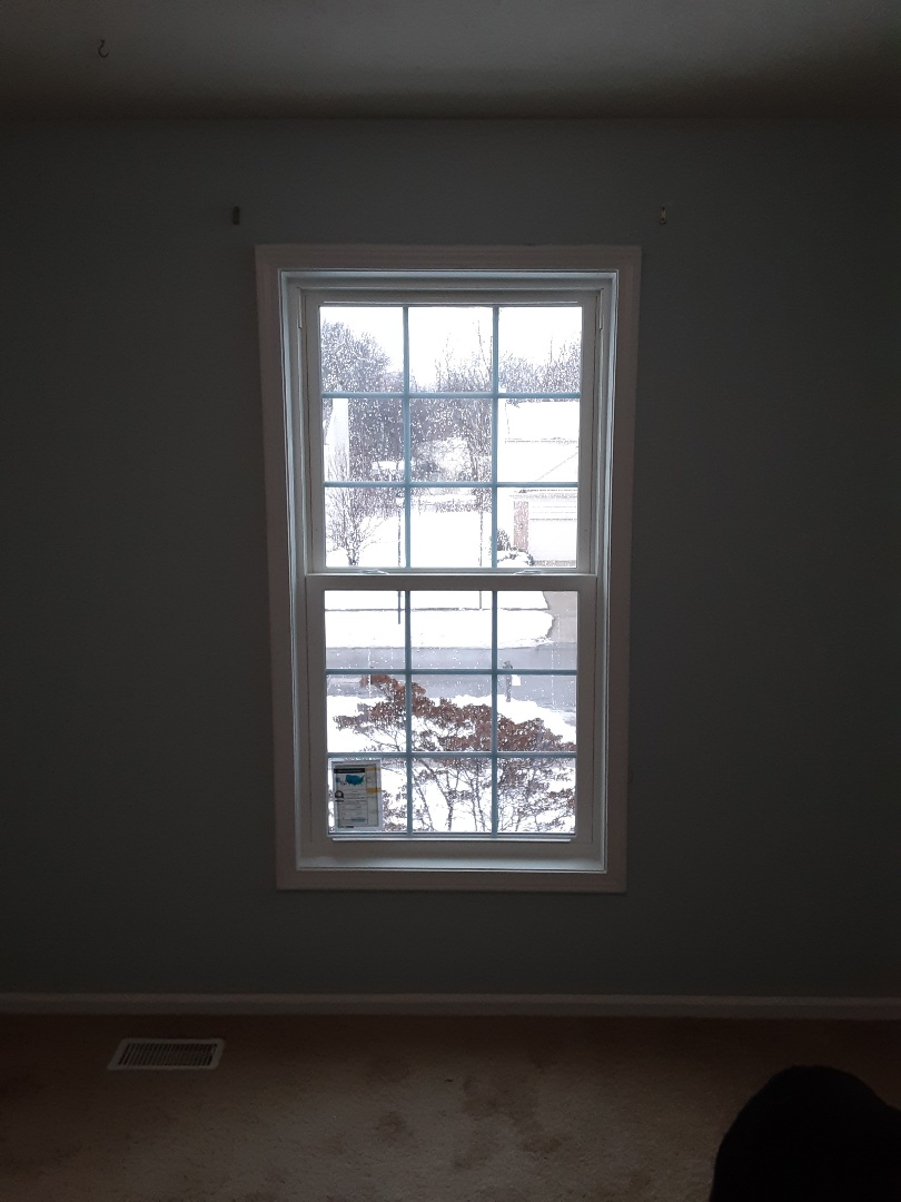 Grand Rapids, MI - Provia double hung vinyl window.