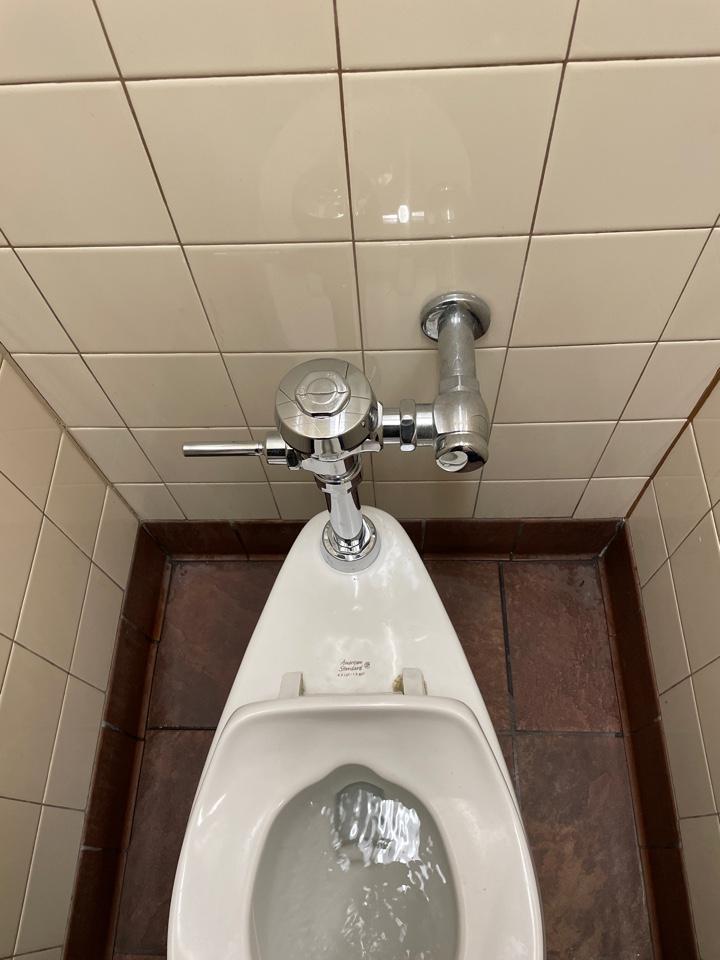 Vestal, NY - Flush valve