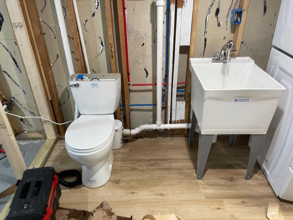 Owego, NY - Downstairs toilet