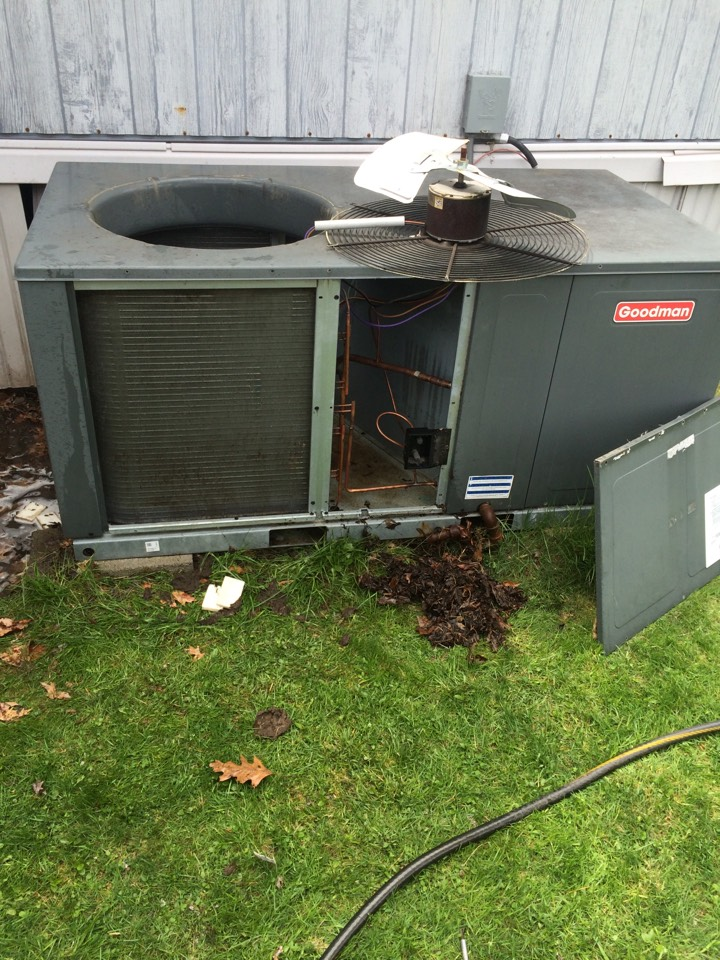 Port Crane, NY - Air conditioner cleaning of goodman ac