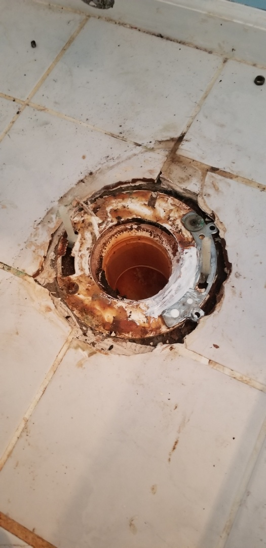 Brandon Township, MI - Toilet flange repair in Ortonville!