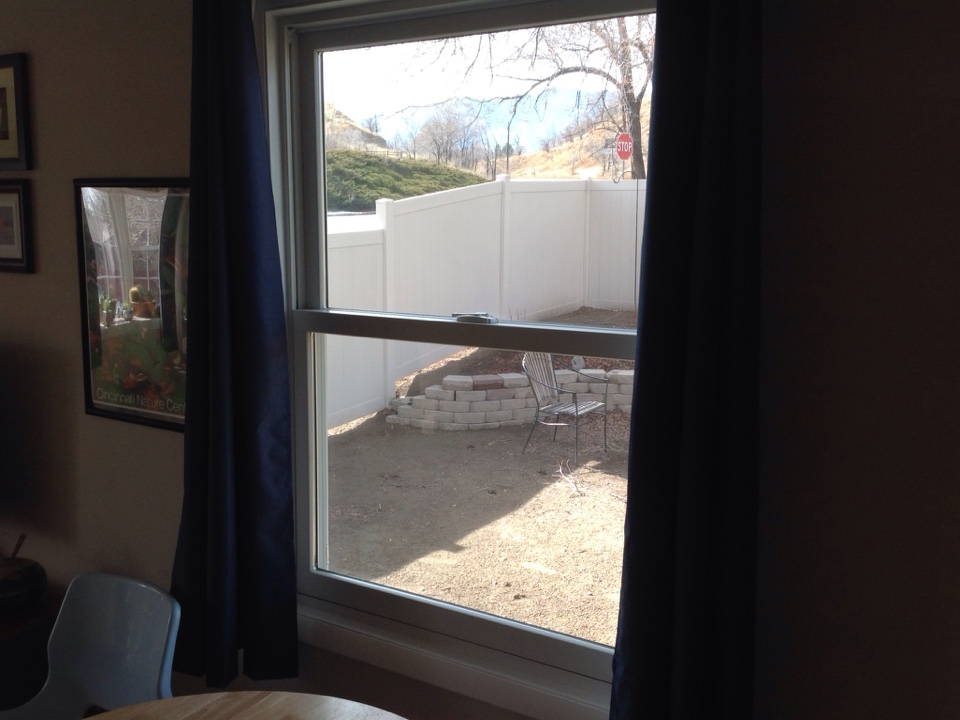 Colorado Springs, CO - Believe it or not, there is a screen in this beautiful double hung replacement window installed with a Truscene screen by Renewal by Andersen!