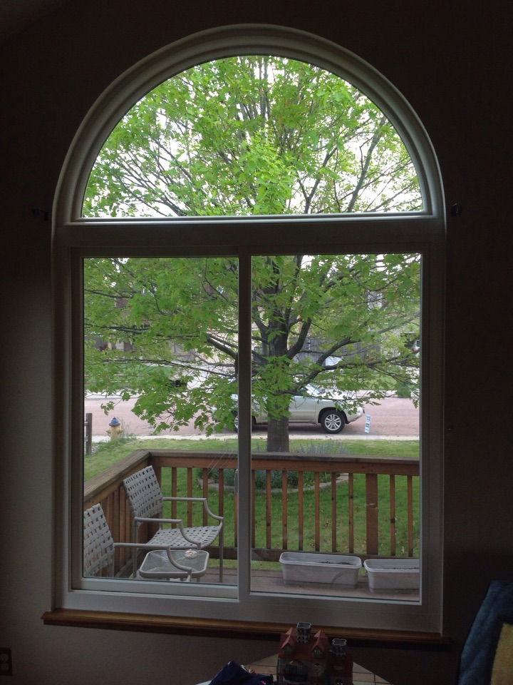 Colorado Springs, CO - Ginger A. thrilled with new Renewal by Andersen replacement windows that on same day as install has made her home more energy efficient and quiet! Commented that she can't hear any more outside noise and loves the look and function of her new windows!