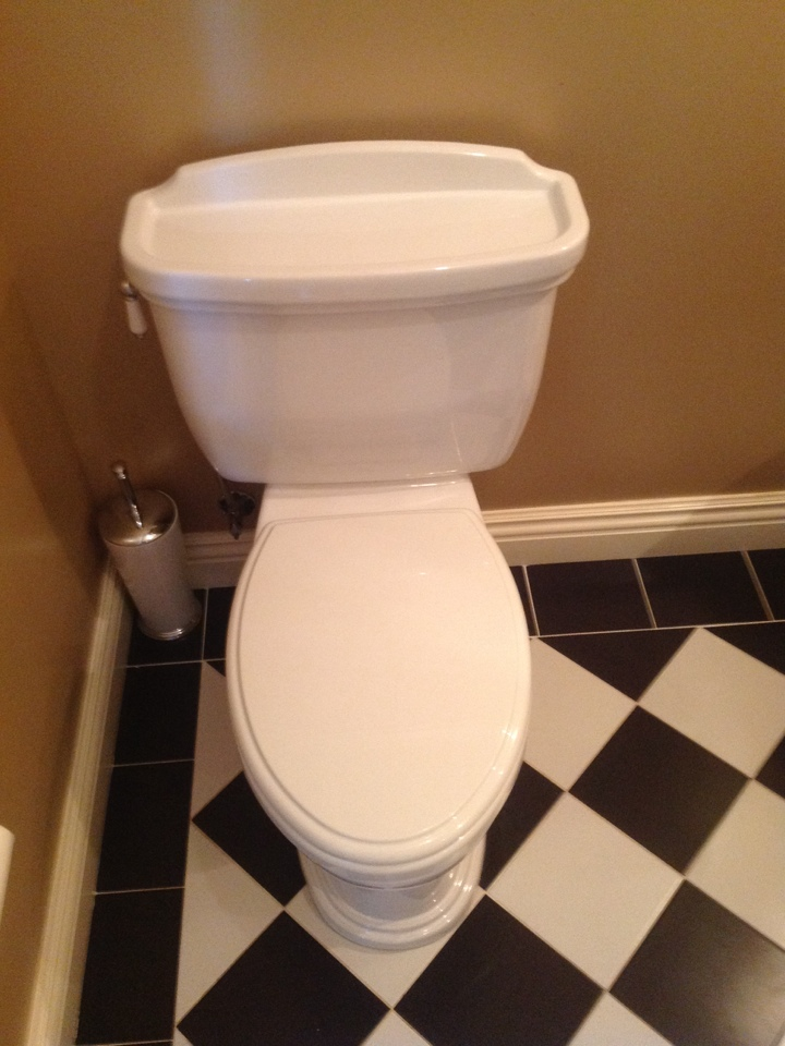 Burlingame, CA - Plumber provided toto toilet repair,also provided leak test on toilets though out house, cleaned sediment filter on tankless water heater.