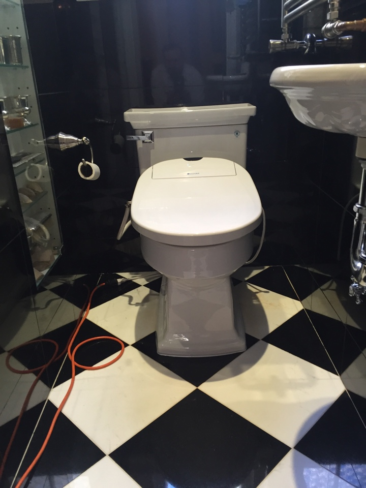 Plumber installed a Toto Lloyd one peice toilet with Bidet seat