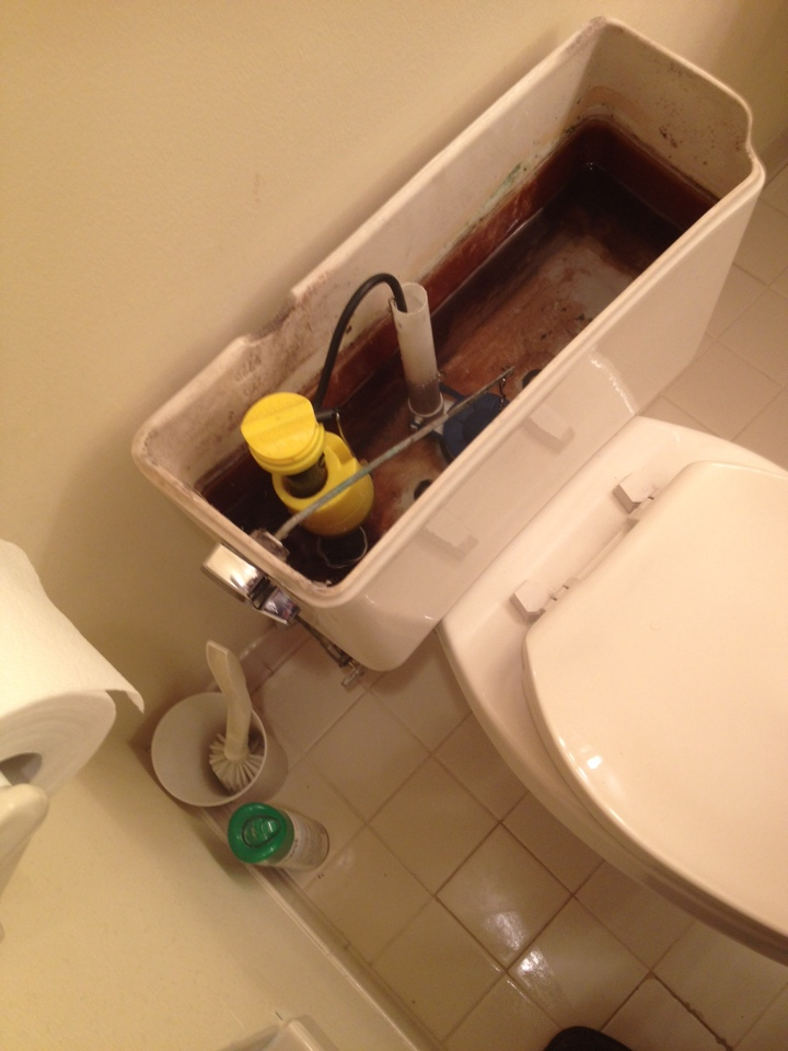 Rebuild Eljer toilet with new fill valve, flush valve, flapper and handle.