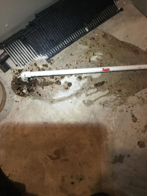 Crystal Lake, IL - Clogged condensate drain on a 14 year old American Standard furnace