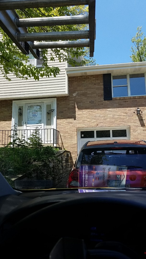 Bethel Park, PA - Caulk chimney, cleaning mold off the roof.