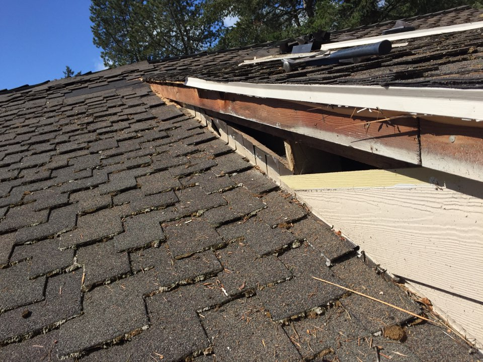 Beaverton, OR - Digging into a mysterious roof leak.  Working on presidential composite roofing. We are replacing step flashing, barge rafters and Certainteed shingles.