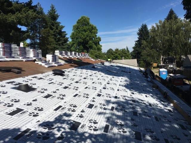 Hillsboro, OR - Just put down GAF's Tiger Paw. Now getting ready to install GAF Timberline Shingles on this business complex In Hillsboro, Oregon. Orion Roofing