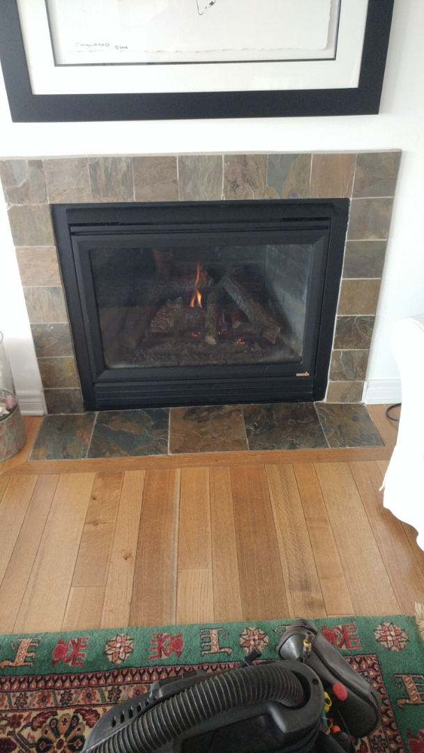 Crystal Beach, ON - Maintenance and inspection of Heat n Glo fireplace.