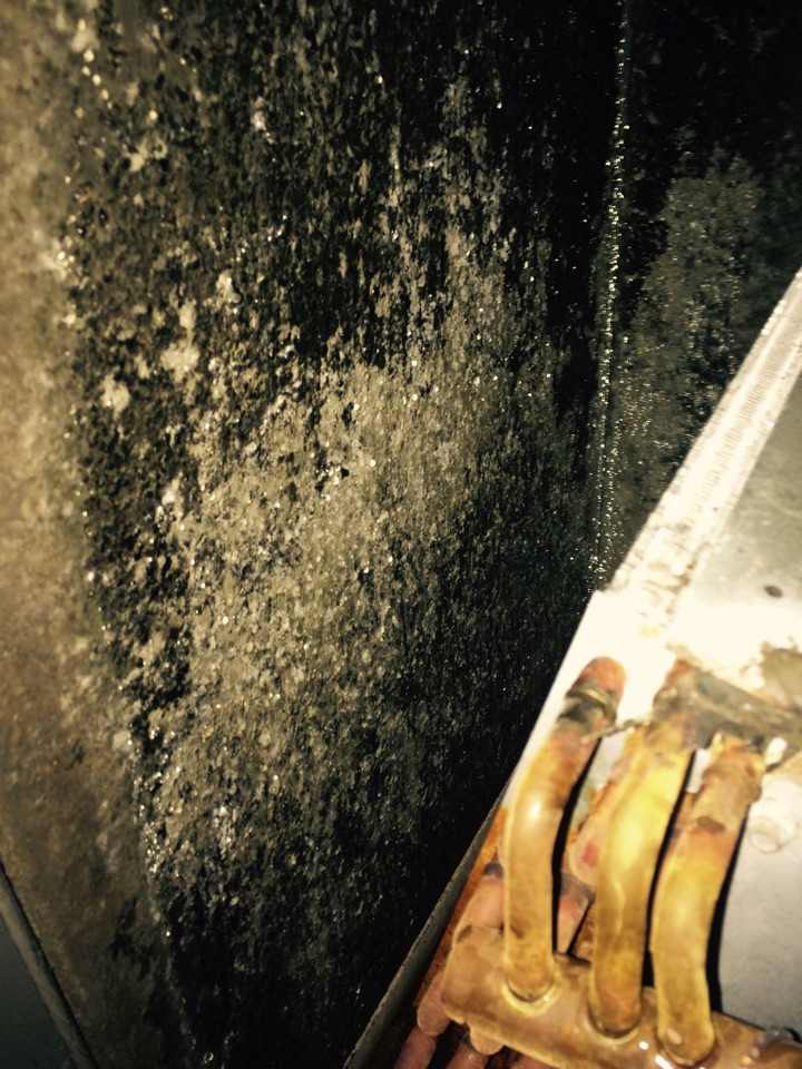 Working on a Armstrong system, addressing mold issue in ductwork.