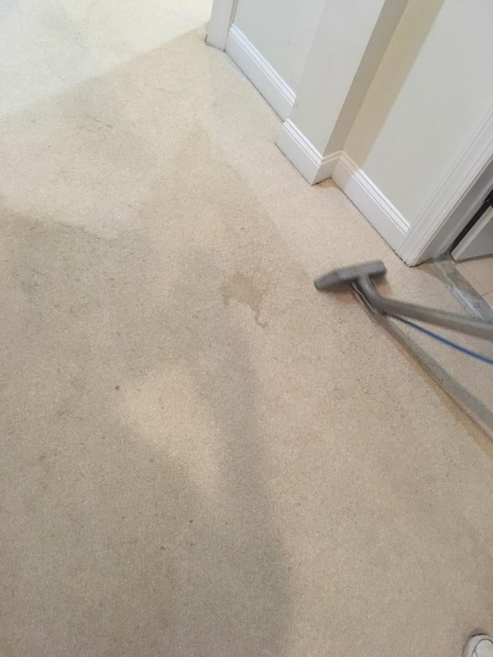 Oakton, VA - Carpet cleaning