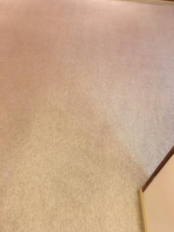 Annandale, VA - Carpet cleaning