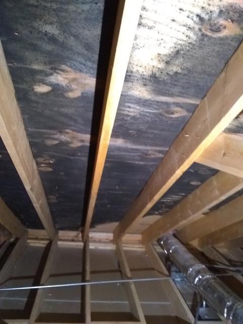 Glenview, IL - Cleaning attic mold, this is a photo before we started.