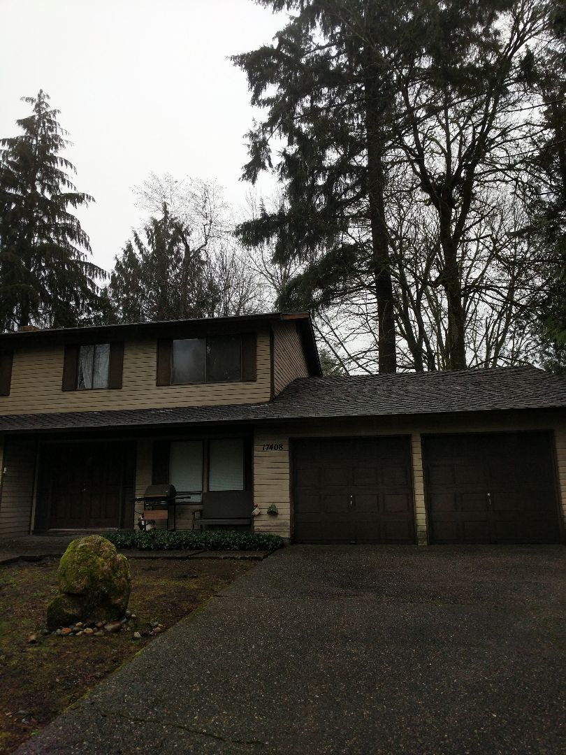 Renton, WA - Gutters and roof cleaned and treated ?? ??