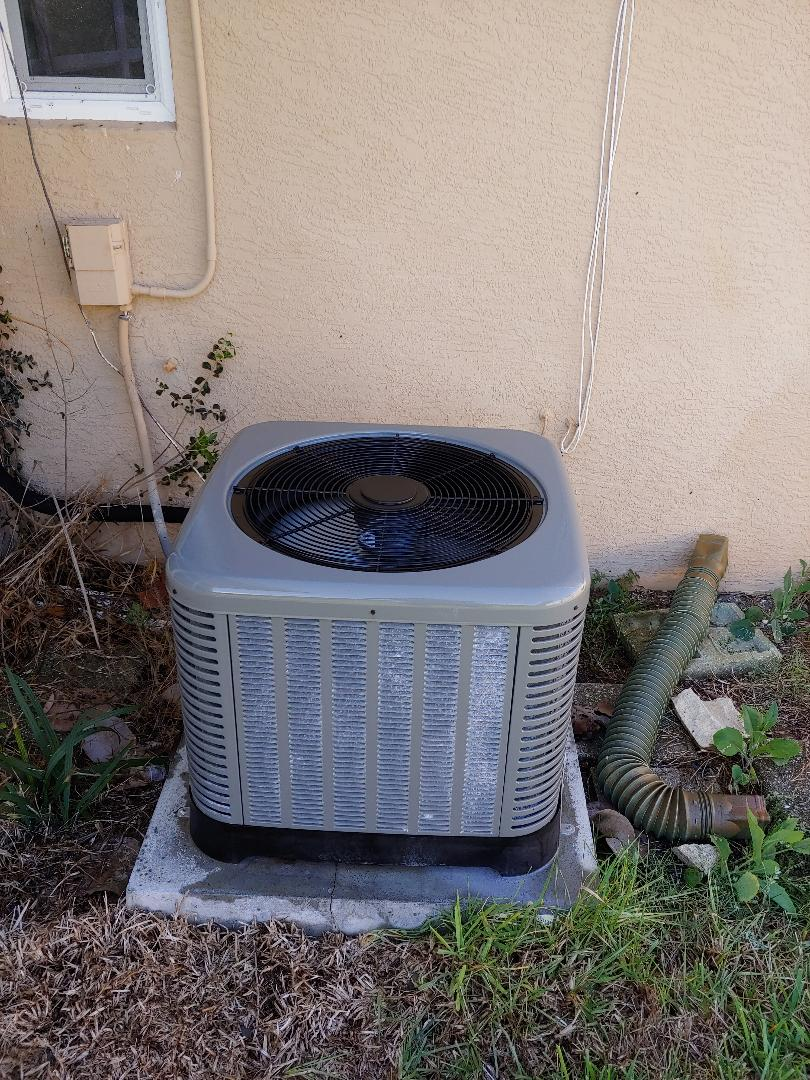 Ormond Beach, FL - Ruud heat pump with clogged drain. Installed drain guard along with corrosion inhibitor treatment.