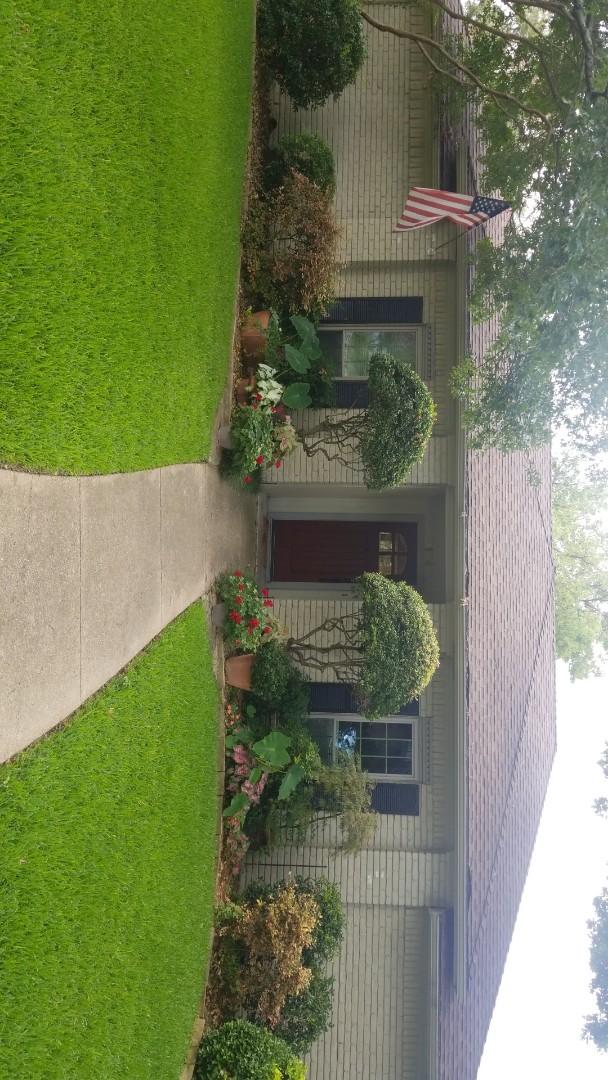 Dallas, TX - Hail damage insurance claim
