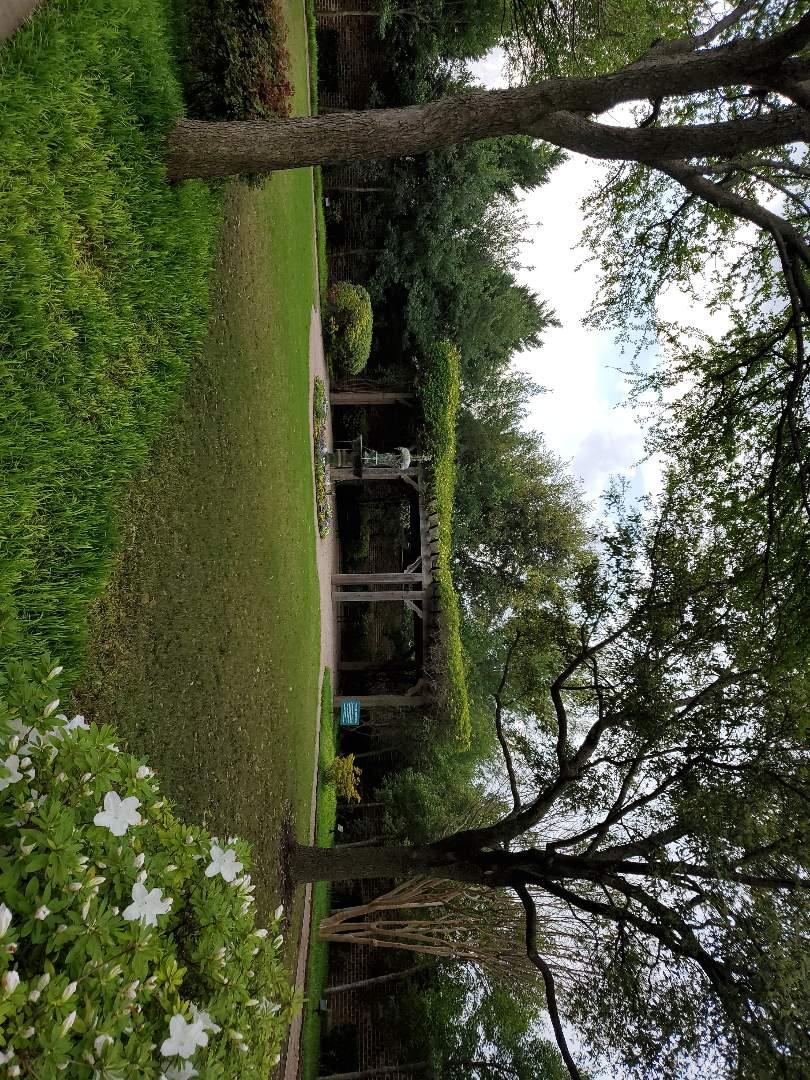 Plano, TX - Building custom Pergolas, custom roofing repair solutions
