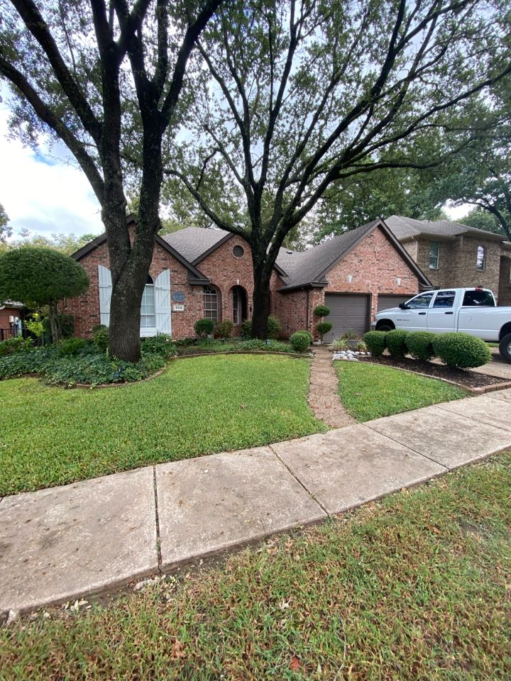 Garland, TX - Free roof inspection for possible tree damage.